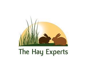 hay-experts