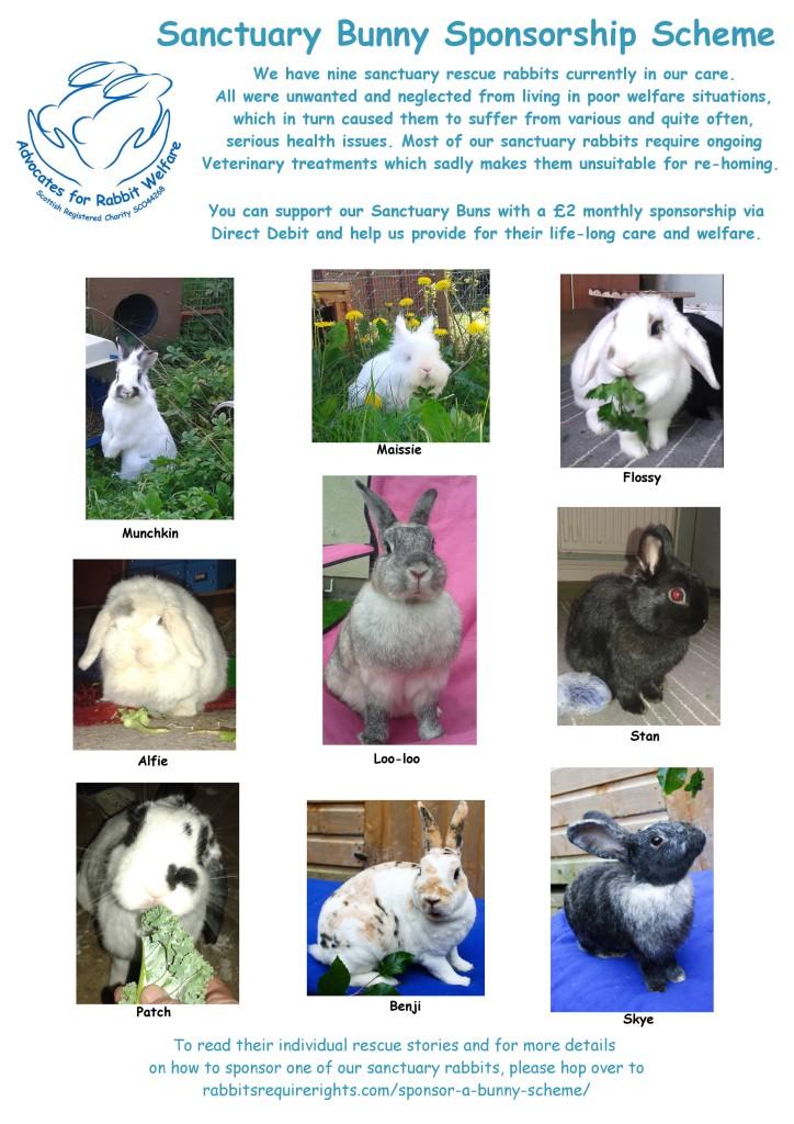 sanctuary-bunny-sponsor-scheme