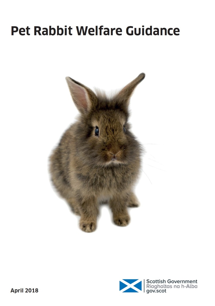 rabbit welfare petition scottish parliament - guidance cover